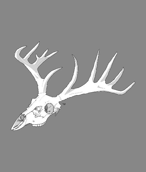 Buck Bones